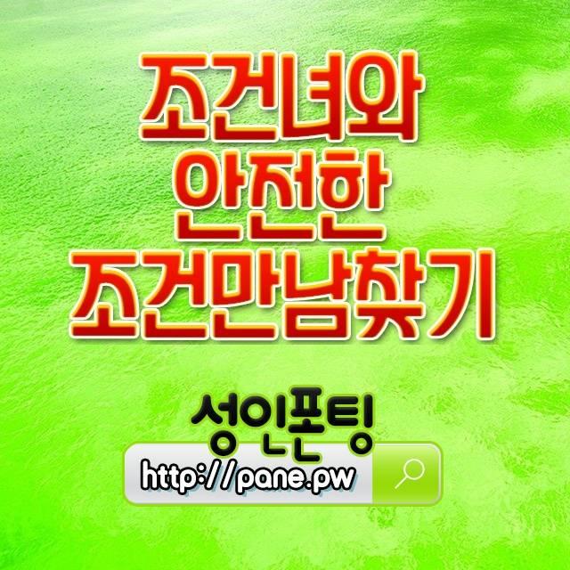 박촌웰시코기분양