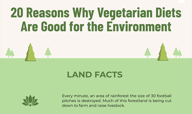 20 Reasons Why Vegetarian Diets Are Good For The Environment