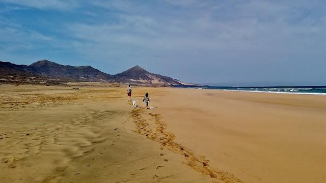 playa de cofete en fuerteventura. En busca del lugar perfecto.