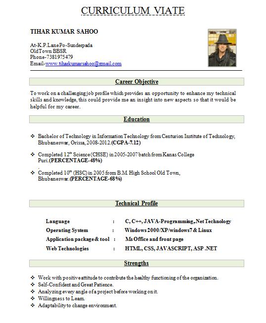 Resume Format For Jobs In Dubai Example Good Resume Template