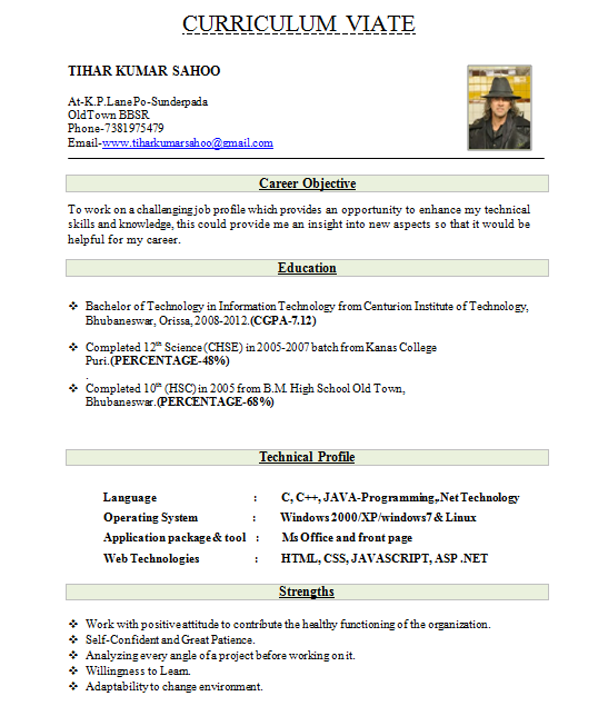 cv format freshers - Resume Sample For Freshers