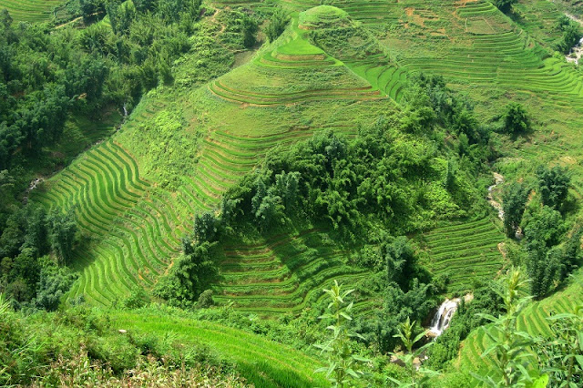 What are the highlights of Sapa tourism in July?
