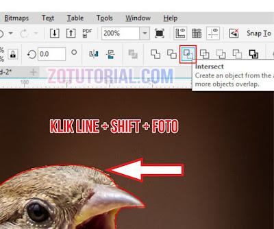 Menyeleksi dan Crop Gambar dengan Pen Tool di CorelDraw 2020 - Intersect