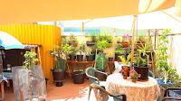 piso en venta calle de zorita castellon terraza3