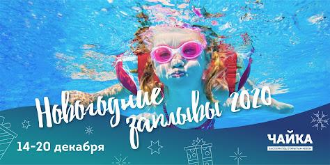 «Новогодние заплывы» в бассейне под открытым небом «Чайка»