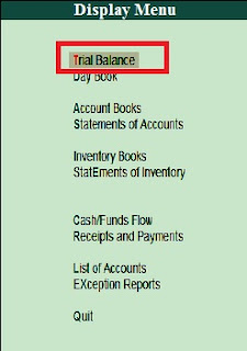 How to create and print trial balance detailed in tally in hindi