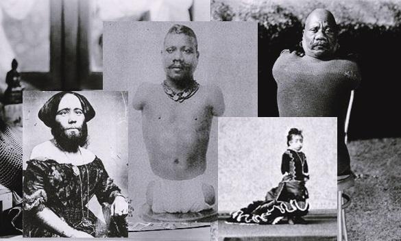 Imagem contendo fotografias de artistas famosos de Freak Shows, nas fotografias podemos ver Madame Clofullia, Lucia Zarate e Prince Randian.