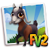 Fv 2 Anglo-Nubian Goat (baby ,adult,prized)
