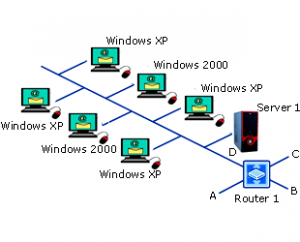 Types of Network Operating System