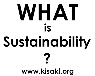 what is sustainability - explained