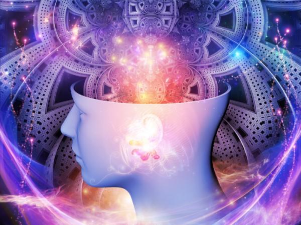 neurobiologia interpersonala daniel siegel mindfulness