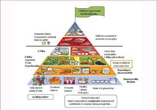 New food pyramid of the SENC-2016