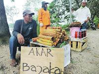 Bajakah Tumbuhan Kalimantan Penyembuh Kangker dan Tumor