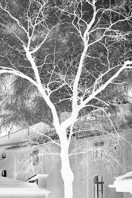 Cztery widzialności fotografii odklejonej - widzialność aparatu. Esej o fotografii odklejonej. fot. Łukasz Cyrus, 2017.