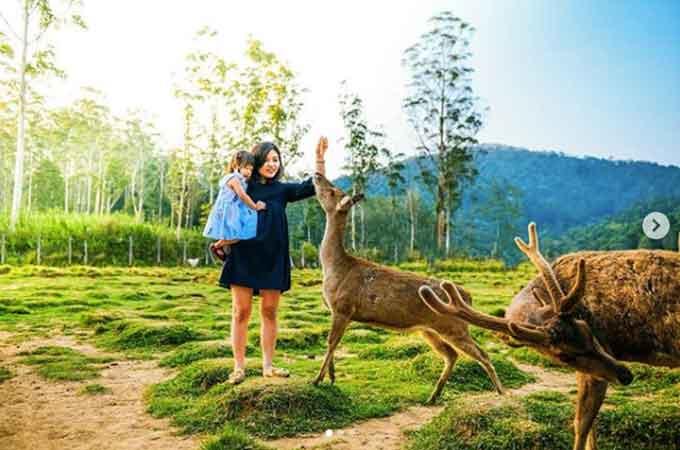 Ranca Upas Bandung, Review lengkap + harga paket Camping
