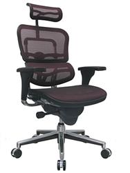 Eurotech Ergohuman Chair