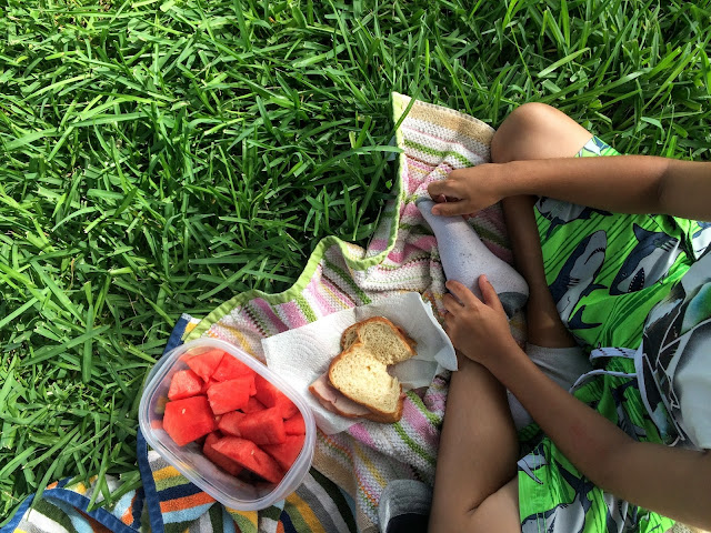 Bring a cooler to Sea World San Antonio for a picnic outside the park