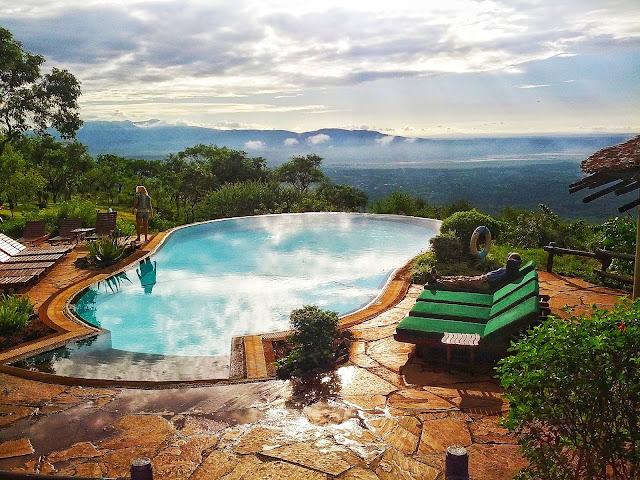 Safari Pool
