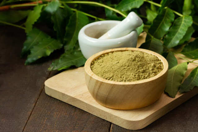 Benefits or Uses of the Neem Plant