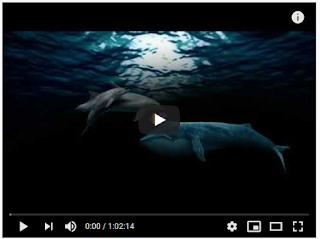 https://www.youtube.com/watch?v=4ZObz29U4R0&feature=youtu.be