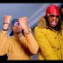 VIDEO |  Brown Mauzo Ft Timmy Tdat – Wote Wazuri (Mp4) Download