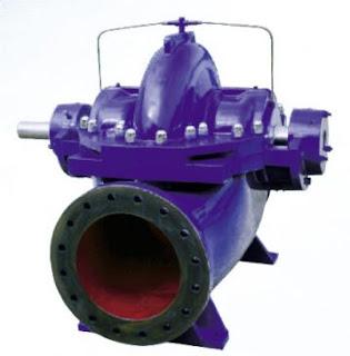 Paragon PS Series Split Case Centrifugal Pump