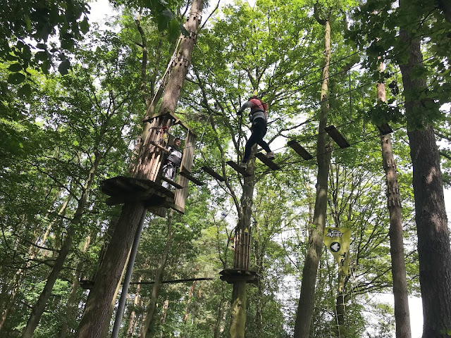 daughter on a wooden bridge between two trees up high at Go Ape