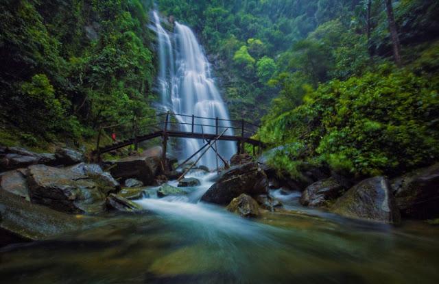 Thông tin hữu ích cho du khách để khám phá Vườn quốc gia Pù Mát Nghệ An