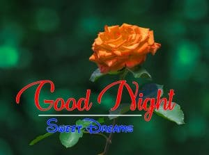 Beautiful Good Night 4k Images For Whatsapp Download 289