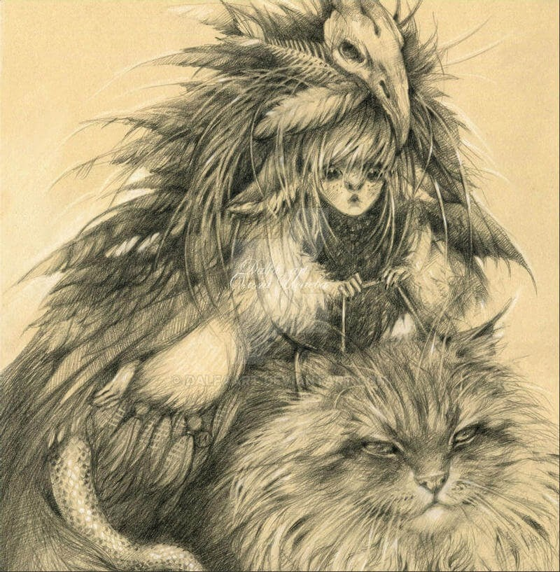 03-Cat-rider-Olga-www-designstack-co