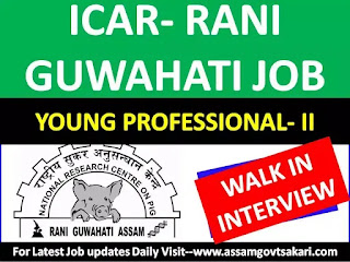 National Research Centre On Pig, Rani Recruitment 2019