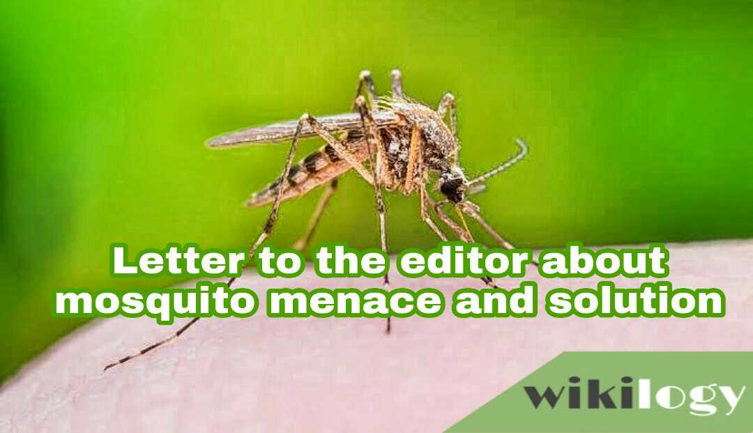 write a letter to editor on the problem of mosquito menace