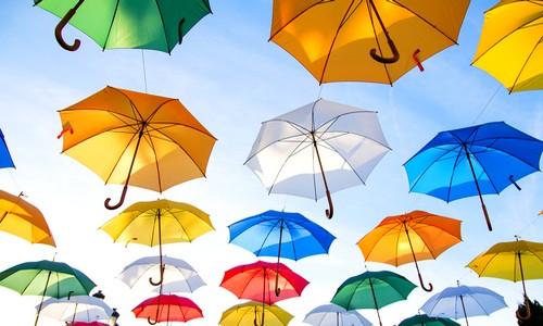 お金持ちの傘