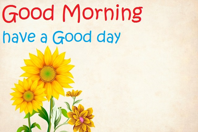 Latest Good Morning Images with Flowers Free Download for Whatsapp