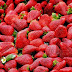 Strawberry Benefits, Uses And Side Effects