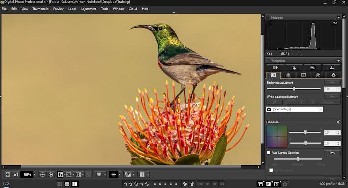 Canon Digital Photo Professional (DPP) 4.15. 0.0 for Windows Sample Image Editing Screen Grab