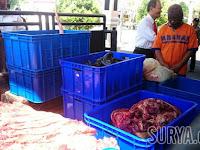 Kebangetan! Setelah Bangkai Ayam, Kini Di Magetan Daging Bangkai Sapi Dijual untuk Konsumsi Manusia