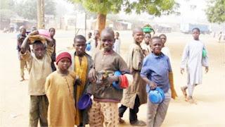 50 Almajiria Test Positive For Coronavirus In Kaduna State