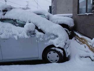 雪が積もった自動車たち