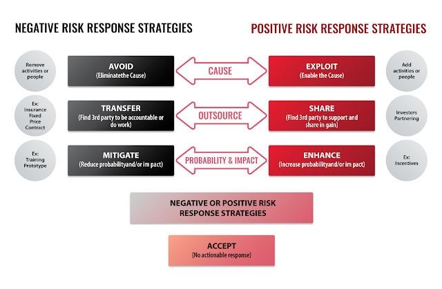 Risk Management Is Project Management for Adults
