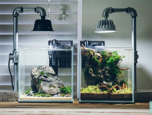 Perlengkapan Aquarium Ikan Hias Dan Fungsinya Lengkap