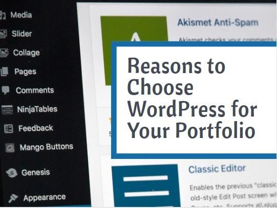 Reasons to Choose WordPress for Your Portfolio | 3 Main reasons