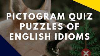 Pictogram Quiz Puzzles of English Idioms