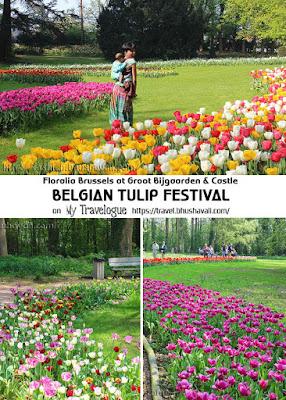 Belgian Tulip Festival Floralia Brussels Pinterest