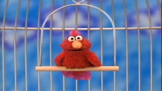Elmo World Pets