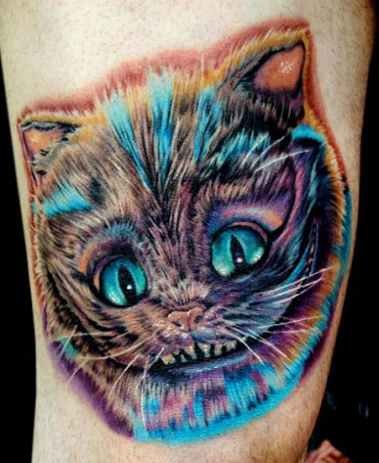 Este colorido gato