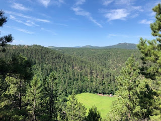 scenic view of the Black Hills and many pine trees in Rapid City