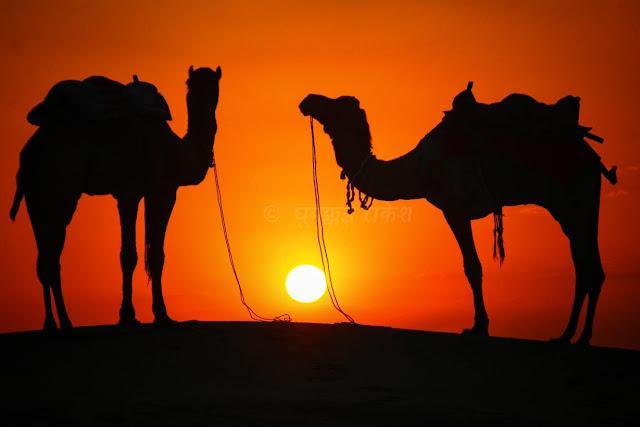 khuri, jaisalmer