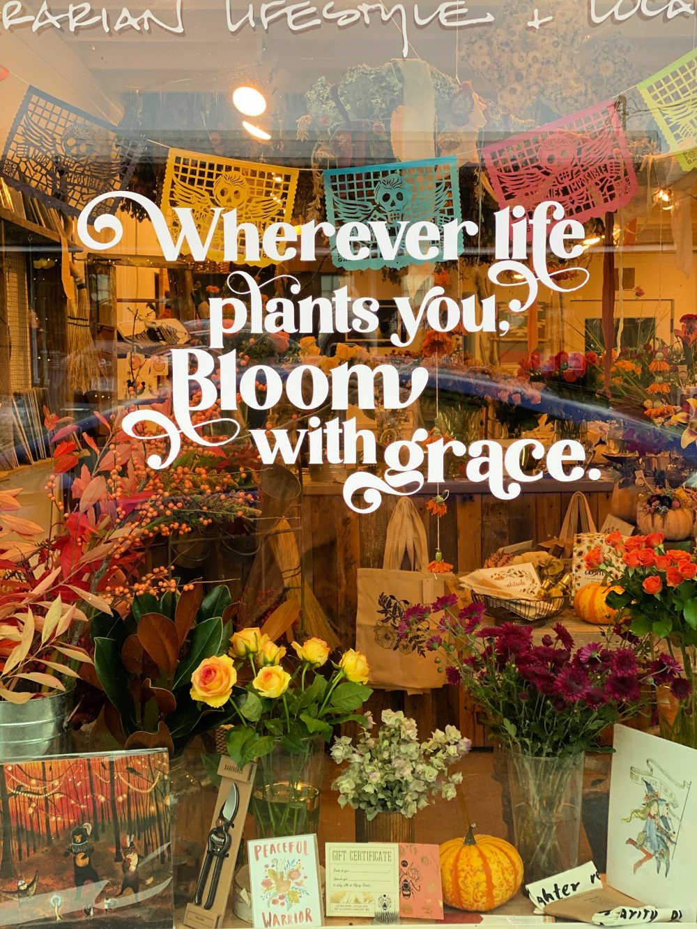 flying bear gift shop flower shop langley