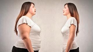 Obeziteye Neden Olan Yapay Kimyasallar